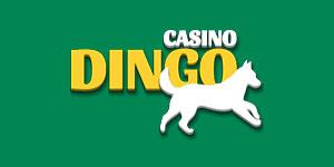 Casino Dingo review