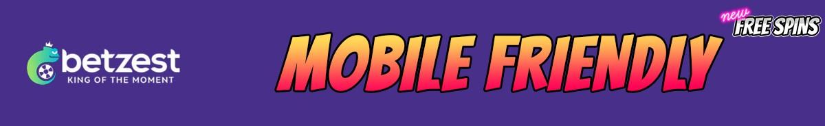 Betzest Casino-mobile-friendly